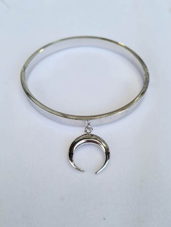 Armband zilver met tand stainless steel massief